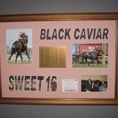 Black-Cavier-091