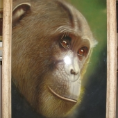 Chimp-Painting-142