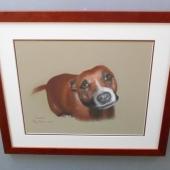 Pastel-dog-DSCN0076